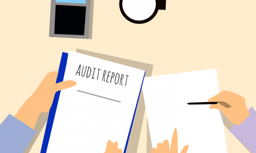 Reduce Chances of Being Audited