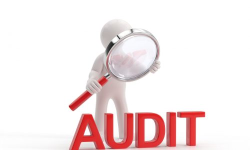 Business Consultants Audit Technique Guide